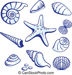 Sea Set From Starfishes and Cockleshells. Vector illustration on white background.