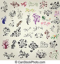set of calligraphic design elements