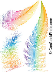 set of colorful vector feather