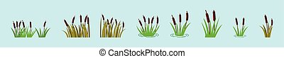 set of reeds in grass cartoon icon design template with various models. vector illustration isolated on blue background