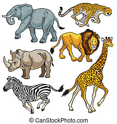 set with africa animals, beasts of savanna, pictures isolated on white background