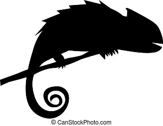 Silhouette of chameleon on the branch