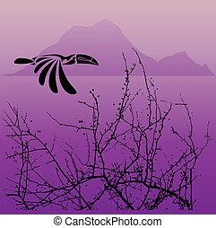 Hornbill and tree
