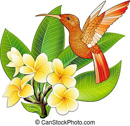 Small hummingbird with hibiscus flowers. Exotic tropical colibri animal icon