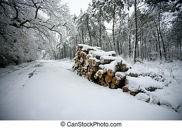 Snow covered logs by the side of the road