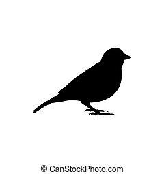 sparrow bird vector silhouette