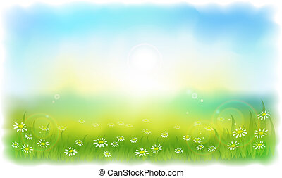 Sun-drenched meadow with daisies. Sunny summer day outdoors. Vector illustration Simulating watercolor..