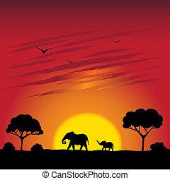 Illustration of sunset on a savanna with elephants