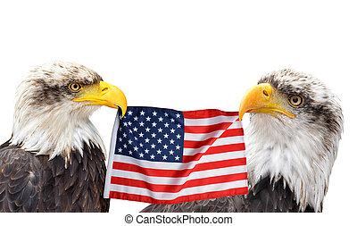 The Bald Eagles holds in the beak of the United States Flag.