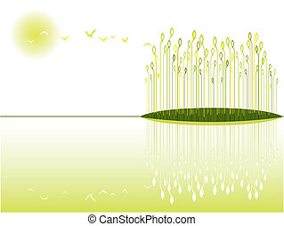 the beautiful and peaceful wetland view
