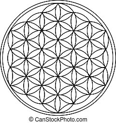The Flower of Life is the modern name given to a geometrical figure composed of multiple evenly-spaced, overlapping circles.