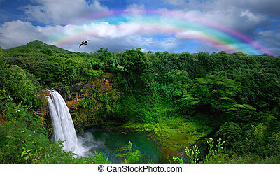 Waterfall in Kauai With Rainbow and Bird Overhead