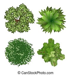 Top view tree elements for landscape design on white background