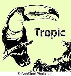 Tropic background Tukan