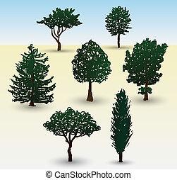 Types of tree illustration