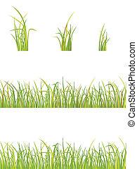 variation of grass