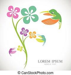 Vector design of hummingbird and flowers