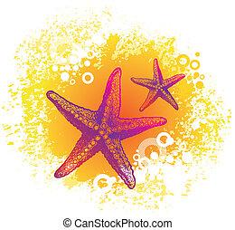 Vector hand drawn starfishes