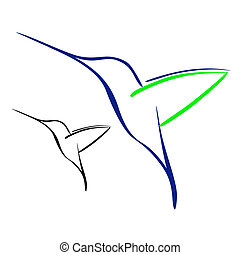 Vector illustration : Hummingbird on a white background.