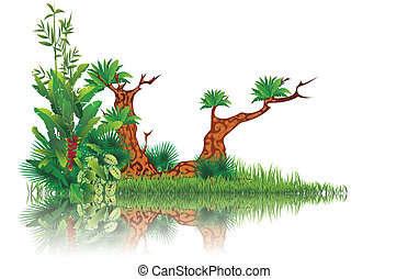 vector illustration of exotic swamp with reflection of trees and grass on water