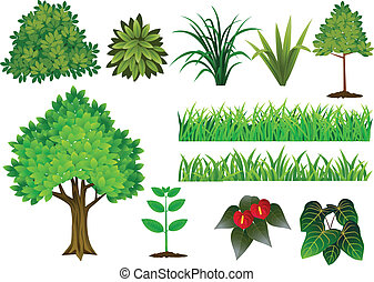 Vector Illustration Of Plant and tree collection
