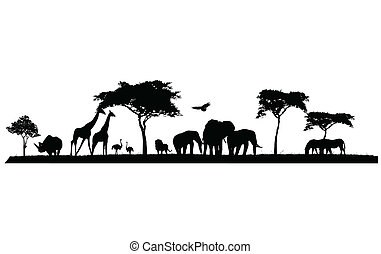 silhouette of wildlife