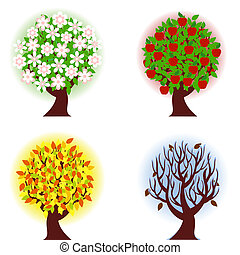 vector illustration of the four seasons of apple tree.
