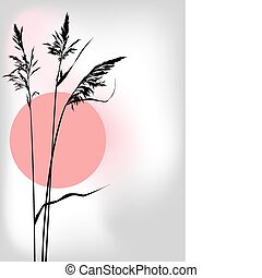vector illustration of the reed at sunset