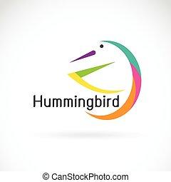 Vector of humming bird design on white background, Bird Logo.