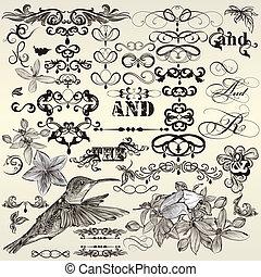Vector set of calligraphic vintage