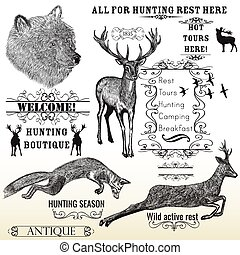 Vector set of engraved hand drawn animals deer, bear, fox and calligraphic frames all for hunting and active rest design