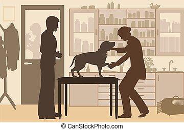 Veterinary clinic toned