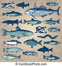 set of retro fish illustrations, scalable and editable vector;