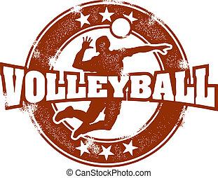 Vintage Volleyball Sport Stamp