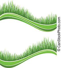 Waves of fresh spring green grass