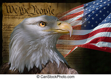 US Flag, Bald Eagle and Constitution montage