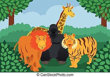 Wild Animal in the Jungle