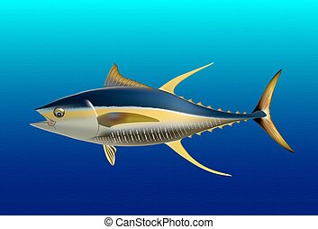 Yellow fin tuna, realistic sea fish illustration on blue background
